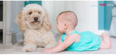 Dieťa a zviera v jednej domácnosti. Je to problém?